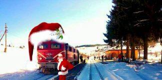 Теснолинейка Коледа